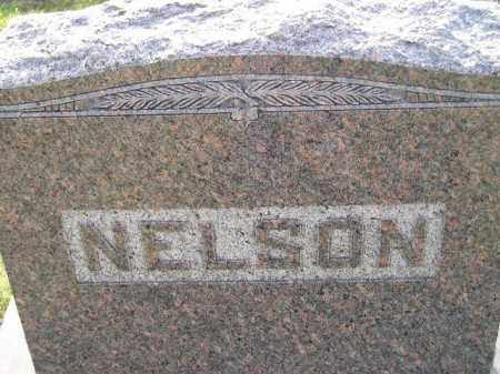 NELSON, FAMILY STONE - Miner County, South Dakota | FAMILY STONE NELSON - South Dakota Gravestone Photos