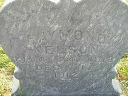 NELSON, RAYMOND - Miner County, South Dakota | RAYMOND NELSON - South Dakota Gravestone Photos