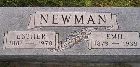 NEWMAN, EMIL - Miner County, South Dakota   EMIL NEWMAN - South Dakota Gravestone Photos