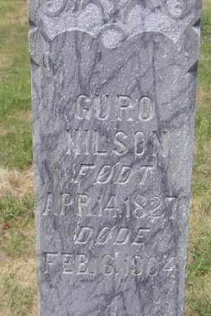 NILSON, GURO - Miner County, South Dakota   GURO NILSON - South Dakota Gravestone Photos