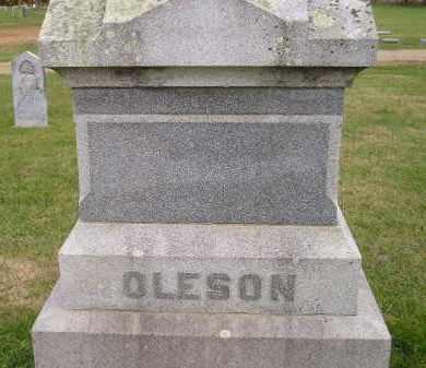 OLESON, FAMILY STONE - Miner County, South Dakota | FAMILY STONE OLESON - South Dakota Gravestone Photos