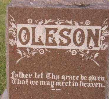 OLESON, FAMILY STONE - Miner County, South Dakota | FAMILY STONE OLESON - South Dakota Gravestone Photos