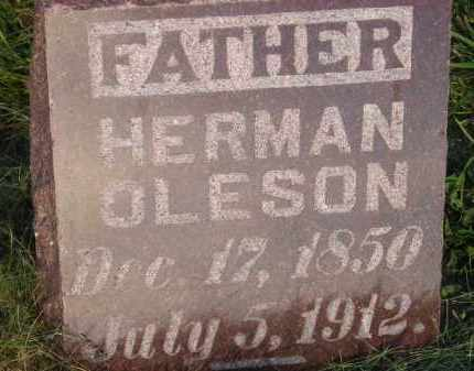OLESON, HERMAN - Miner County, South Dakota | HERMAN OLESON - South Dakota Gravestone Photos