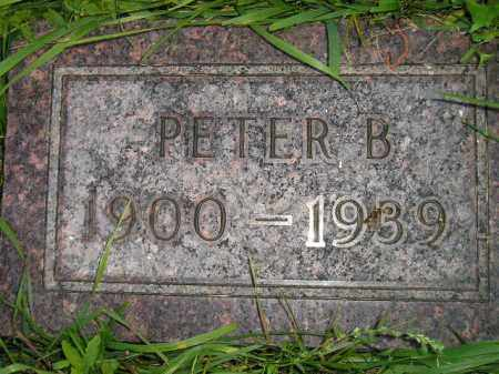 PAULSON, PETER B. - Miner County, South Dakota | PETER B. PAULSON - South Dakota Gravestone Photos