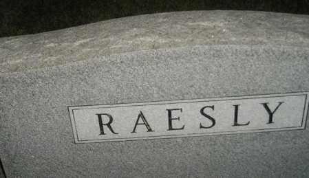 RAESLY, FAMILY STONE - Miner County, South Dakota | FAMILY STONE RAESLY - South Dakota Gravestone Photos