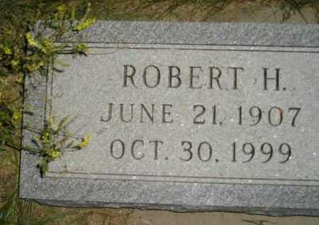 RAESLY, ROBERT H. - Miner County, South Dakota   ROBERT H. RAESLY - South Dakota Gravestone Photos