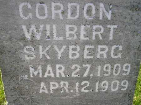 SKYBERG, GORDON WILBERT - Miner County, South Dakota | GORDON WILBERT SKYBERG - South Dakota Gravestone Photos