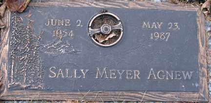 AGNEW, SALLY - Minnehaha County, South Dakota   SALLY AGNEW - South Dakota Gravestone Photos