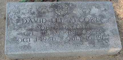 ALCORN, DAVID LEE (MILITARY) - Minnehaha County, South Dakota | DAVID LEE (MILITARY) ALCORN - South Dakota Gravestone Photos