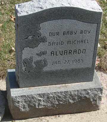 ALVARADO, DAVID MICHAEL - Minnehaha County, South Dakota | DAVID MICHAEL ALVARADO - South Dakota Gravestone Photos
