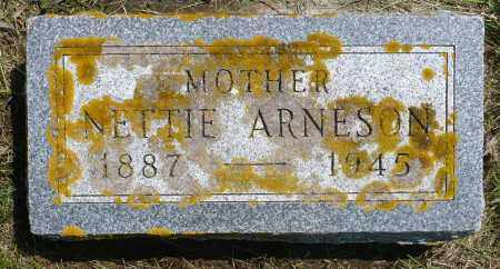 ARNESON, NETTTIE - Minnehaha County, South Dakota | NETTTIE ARNESON - South Dakota Gravestone Photos