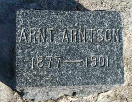 ARNTSON, ARNT - Minnehaha County, South Dakota | ARNT ARNTSON - South Dakota Gravestone Photos