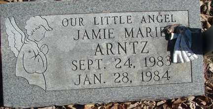 ARNTZ, JAMIE MARIE - Minnehaha County, South Dakota   JAMIE MARIE ARNTZ - South Dakota Gravestone Photos
