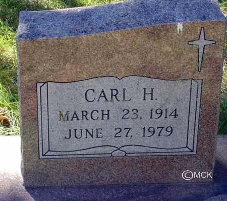 ARVIDSON, CARL H. - Minnehaha County, South Dakota | CARL H. ARVIDSON - South Dakota Gravestone Photos