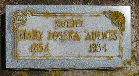 AULWES, MARY - Minnehaha County, South Dakota | MARY AULWES - South Dakota Gravestone Photos