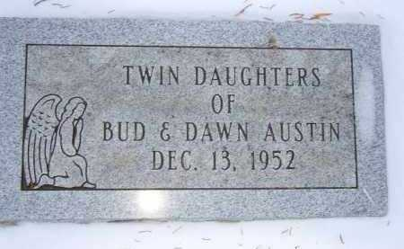 AUSTIN, TWIN DAUGHTERS - Minnehaha County, South Dakota | TWIN DAUGHTERS AUSTIN - South Dakota Gravestone Photos