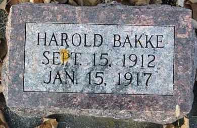 BAKKE, HAROLD - Minnehaha County, South Dakota | HAROLD BAKKE - South Dakota Gravestone Photos