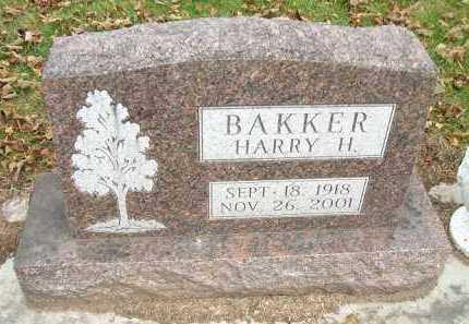 BAKKER, HARRY H. - Minnehaha County, South Dakota | HARRY H. BAKKER - South Dakota Gravestone Photos