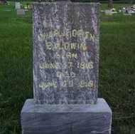 BALDWIN, CHARLIE ORIEN - Minnehaha County, South Dakota | CHARLIE ORIEN BALDWIN - South Dakota Gravestone Photos