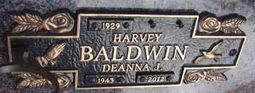 BALDWIN, HARVEY - Minnehaha County, South Dakota | HARVEY BALDWIN - South Dakota Gravestone Photos