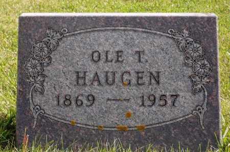 HAUGEN, OLE T. - Minnehaha County, South Dakota | OLE T. HAUGEN - South Dakota Gravestone Photos