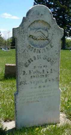 ERIKSON, MIKAEL - Minnehaha County, South Dakota | MIKAEL ERIKSON - South Dakota Gravestone Photos