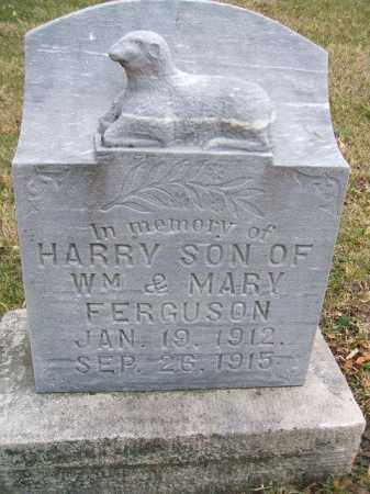FERGUSON, HARRY - Minnehaha County, South Dakota | HARRY FERGUSON - South Dakota Gravestone Photos