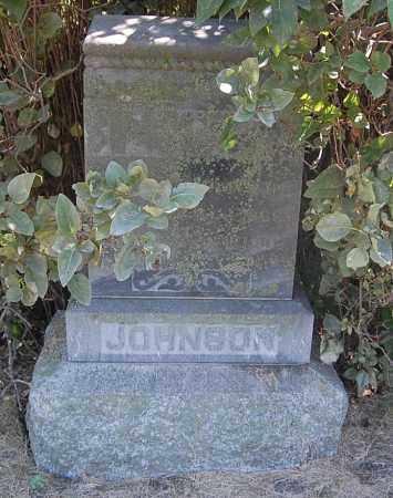 JOHNSON, ALFRED - Minnehaha County, South Dakota | ALFRED JOHNSON - South Dakota Gravestone Photos