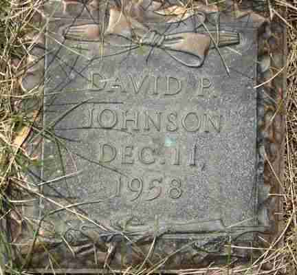 JOHNSON, DAVID P. - Minnehaha County, South Dakota | DAVID P. JOHNSON - South Dakota Gravestone Photos