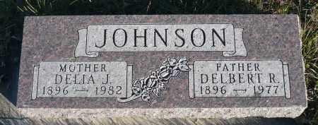 JOHNSON, DELIA J. - Minnehaha County, South Dakota   DELIA J. JOHNSON - South Dakota Gravestone Photos