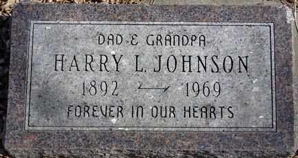 JOHNSON, HARRY L. - Minnehaha County, South Dakota | HARRY L. JOHNSON - South Dakota Gravestone Photos