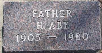 JOHNSON, H. ABE - Minnehaha County, South Dakota | H. ABE JOHNSON - South Dakota Gravestone Photos