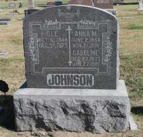 JOHNSON, CAROLINE - Minnehaha County, South Dakota | CAROLINE JOHNSON - South Dakota Gravestone Photos