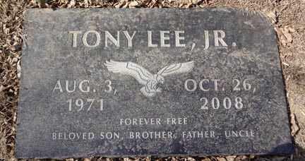 LEE, TONY JR. - Minnehaha County, South Dakota | TONY JR. LEE - South Dakota Gravestone Photos
