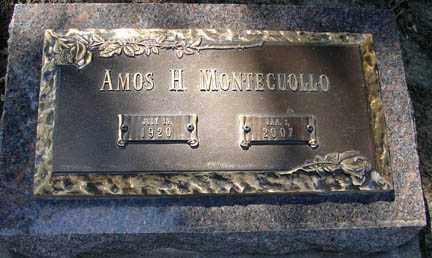 MONTECUOLLO, AMOS H. - Minnehaha County, South Dakota | AMOS H. MONTECUOLLO - South Dakota Gravestone Photos