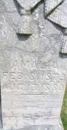 MUNSON, AMALIA - Minnehaha County, South Dakota | AMALIA MUNSON - South Dakota Gravestone Photos