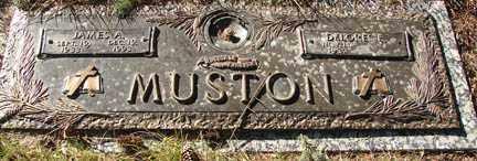 MUSTON, JAMES A. - Minnehaha County, South Dakota   JAMES A. MUSTON - South Dakota Gravestone Photos