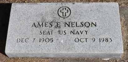 NELSON, AMES E. (NAVY) - Minnehaha County, South Dakota | AMES E. (NAVY) NELSON - South Dakota Gravestone Photos