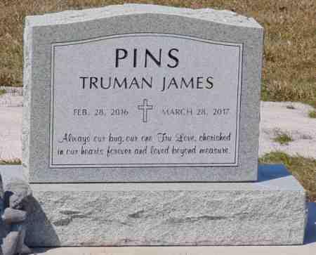 PINS, TRUMAN JAMES - Minnehaha County, South Dakota | TRUMAN JAMES PINS - South Dakota Gravestone Photos