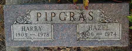 PIPGRAS, HARRY - Minnehaha County, South Dakota | HARRY PIPGRAS - South Dakota Gravestone Photos
