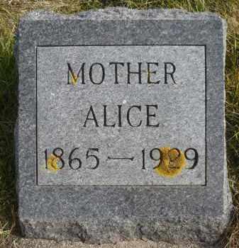 THOMPSON, ALICE - Minnehaha County, South Dakota   ALICE THOMPSON - South Dakota Gravestone Photos