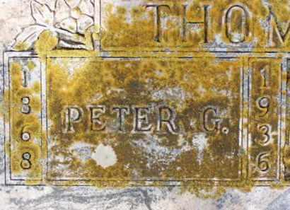THOMPSON, PETER G. - Minnehaha County, South Dakota   PETER G. THOMPSON - South Dakota Gravestone Photos