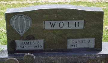 WOLD, CAROL A. - Minnehaha County, South Dakota | CAROL A. WOLD - South Dakota Gravestone Photos