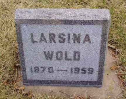 WOLD, LARSINA - Minnehaha County, South Dakota | LARSINA WOLD - South Dakota Gravestone Photos