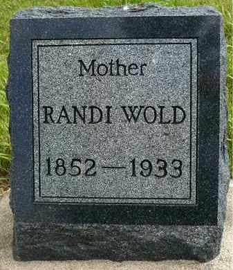 WOLD, RANDI - Minnehaha County, South Dakota | RANDI WOLD - South Dakota Gravestone Photos