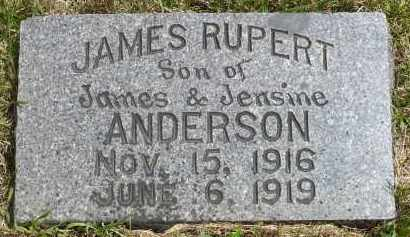 ANDERSON, JAMES RUPERT - Moody County, South Dakota | JAMES RUPERT ANDERSON - South Dakota Gravestone Photos