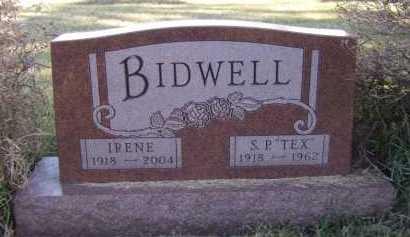 BIDWELL, IRENE - Moody County, South Dakota | IRENE BIDWELL - South Dakota Gravestone Photos