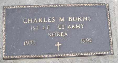BURNS, CHARLES M (MILITARY) - Moody County, South Dakota | CHARLES M (MILITARY) BURNS - South Dakota Gravestone Photos