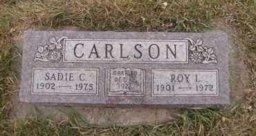 CARLSON, ROY L - Moody County, South Dakota   ROY L CARLSON - South Dakota Gravestone Photos