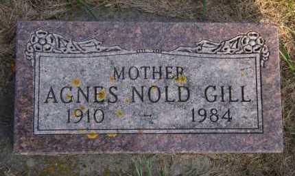 NOLD GILL, AGNES - Moody County, South Dakota | AGNES NOLD GILL - South Dakota Gravestone Photos